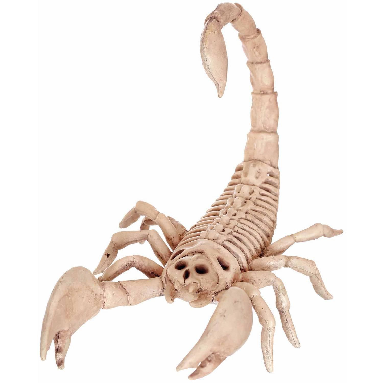 Scorpion Skeleton Halloween Decoration - Walmart.com