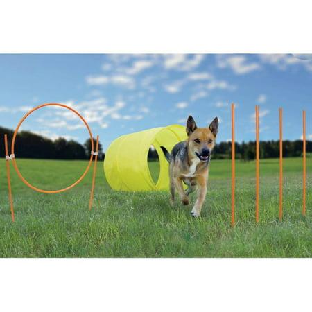 Outward Hound Dog Agility Starter Kit Outdoor (Dog Agility Course)