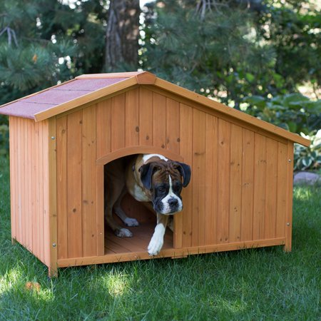 Boomer & George Asymmetrical Dog House, Medium Built with only the best love and care for your dog, the Boomer & George Asymmetrical Dog House is a bow-wow dream come true. This sturdy dog house features an asymmetrical design and is made with Chinese fir wood in a warm brown hue. Your dog will feel right at home with the handy door and a cozy interior. Best of all, this piece is a Hayneedle exclusive you won't find anywhere else.