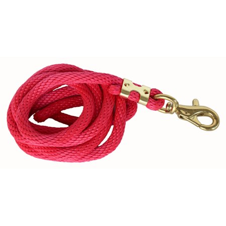 Brass Rope Handle - 10 Feet Horse Nylon Heavy Duty Lead Rope Brass Hardware 60534-47