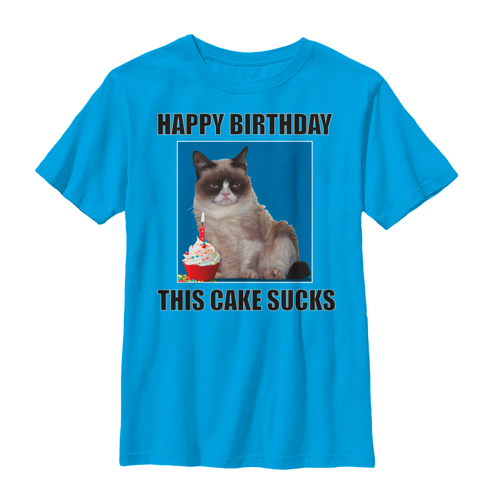 Grumpy Cat Boys' This Cake Sucks T-Shirt