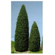 Dollhouse Trees, Blue Spruce, 1.5 Inch , 10Pc