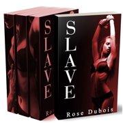 SLAVE: Le Test de Soumission (LINTGRALE + Histoire BONUS) - eBook
