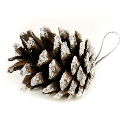 - 27Pcs Natural Pine Cones White Snow Tipped Pine Cone Decor Ornaments for Christmas Tree