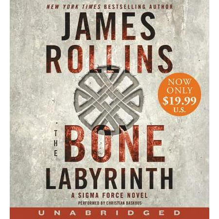 The Bone Labyrinth Low Price CD (Audiobook)](Low Price Website)