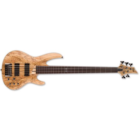 ESP LTD B-205SMFL Fretless 5-String Bass