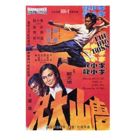 Posterazzi MOV196197 Big Boss Movie Poster - 11 x 17 in. - image 1 of 1
