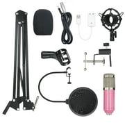 Andoer BM800 Condenser Microphone Lit Pro Audio Studio Recording & Brocasting Adjustable Mic Suspension Scissor Arm Filter