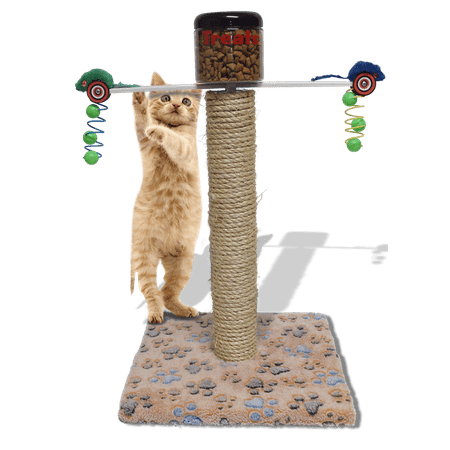 Exercise Toy Cat Climber Tree With Food Dispenser To Control Weight Complete Activity Post