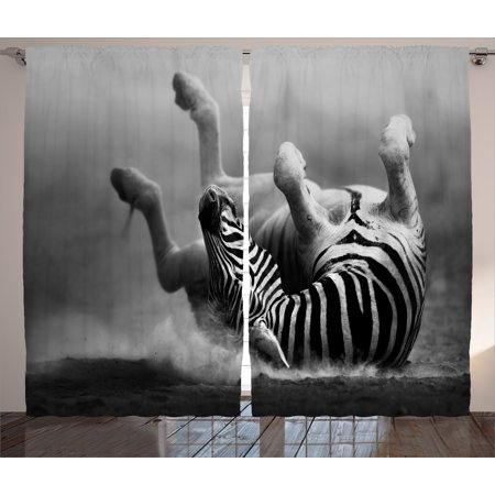 Wild Zebra (Wildlife Decor Curtains 2 Panels Set, Zebra Rolling in the Dust Artistic Savage Mammal Activity Eco Photo, Window Drapes for Living Room Bedroom, 108W X 84L Inches, Black and White,)