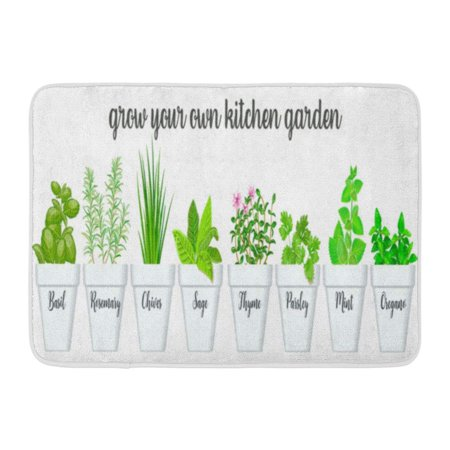 GODPOK Culinary Herbs in White Pots with Labels Green Growing Basil Sage Rosemary Chives Thyme Parsley Mint Rug Doormat Bath Mat 23.6x15.7 inch