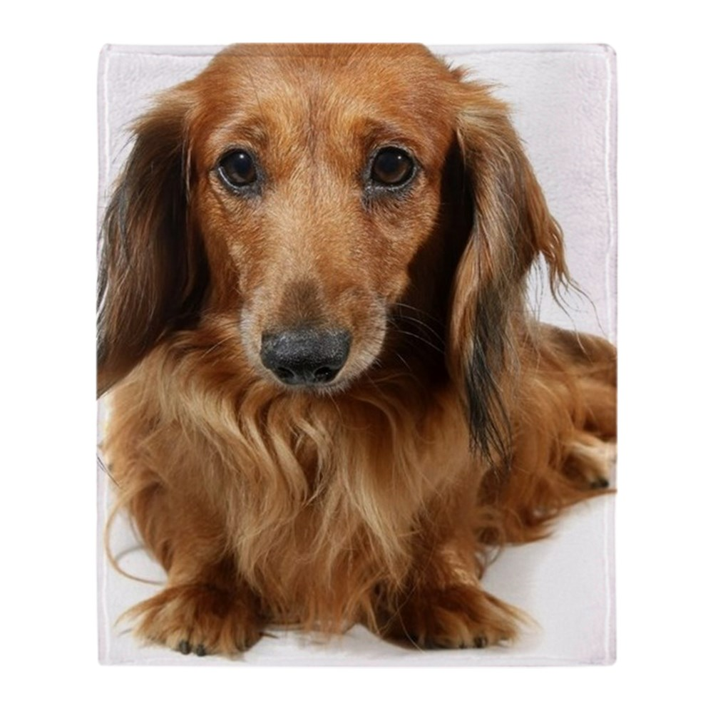 "CafePress Dog Long-Haired Dachshund Pet Soft Fleece Throw Blanket, 50""x60""... by"