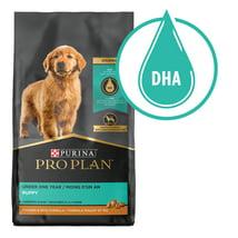 Dog Food: Purina Pro Plan Savor Puppy