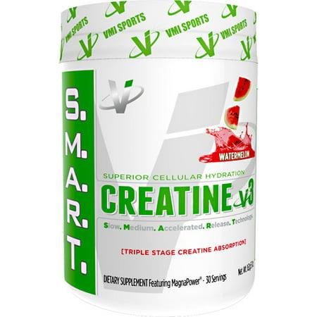 VMI Sports SMART Créatine v3