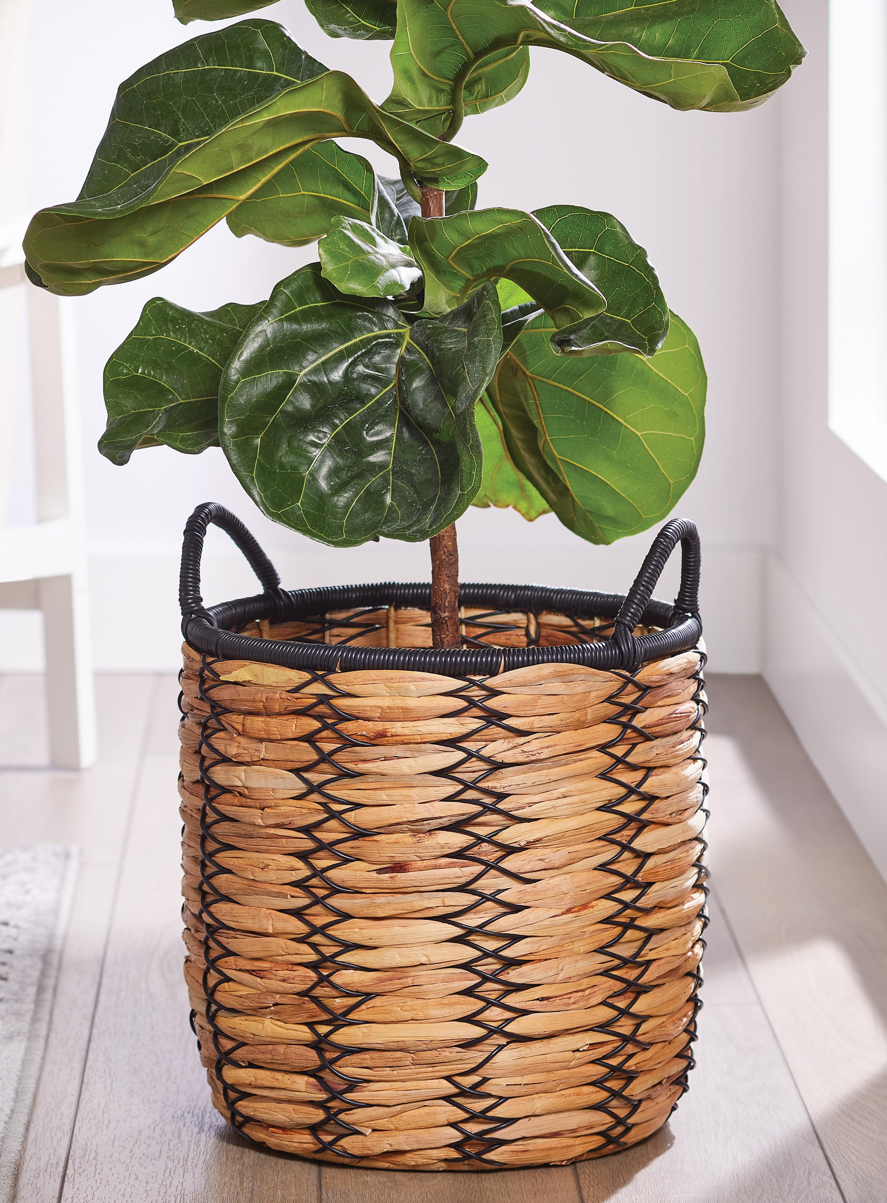 Shop Better Homes & Gardens 12 Inch Claren Woven Water Hyacinth Basket Planter from Walmart on Openhaus