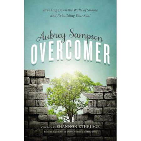 Image result for Overcomer: Breaking Down the Walls of Shame and Rebuilding Your Soul