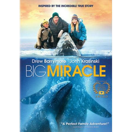 - Big Miracle (DVD)