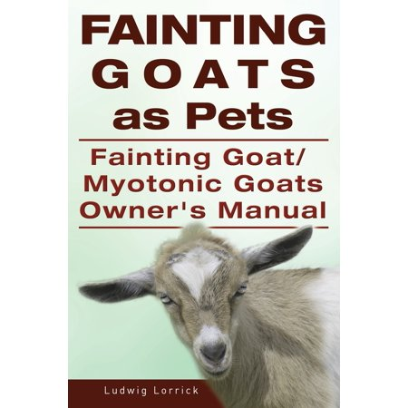 Fainting Goats as Pets. Fainting Goat or Myotonic Goats Owners
