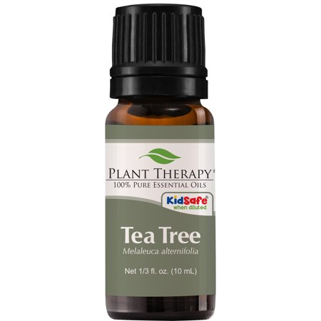 Plant Therapy Tea Tree Essential Oil   100% Pure, Undiluted, Natural Aromatherapy, Therapeutic Grade   10 mL (1/3 (Pure Aromatherapy)