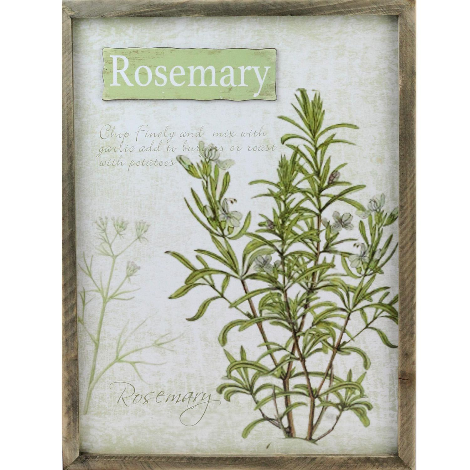 "15.75"" Decorative Rosemary Herb Wood Framed Wall Hanging Plaque by Melrose"
