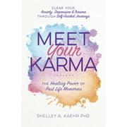 Meet Your Karma: The Healing Power of Past Life Memories (Paperback)