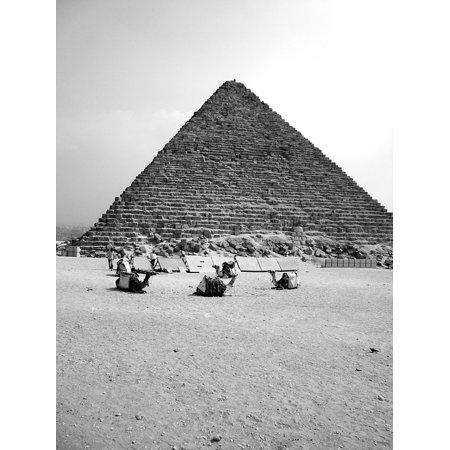 Peel-n-Stick Poster of Giza Ghizà Camel Pharaoh Pyramid Egypt Africa Prin Poster 24x16 Adhesive Sticker Poster - Egyptian Pharo