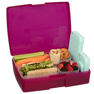 Lunch Box - Leakproof Translucent Raspberry Bento Box with 5 Blue Containers - USA Made