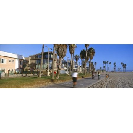 People riding bicycles near a beach Venice Beach City of Los Angeles California USA Stretched Canvas - Panoramic Images (36 x