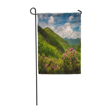 SIDONKU Asheville North Carolina Blue Ridge Parkway Spring Flowers Scenic Mountain Landscape Garden Flag Decorative Flag House Banner 12x18 inch
