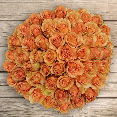 50 Stem Peach Roses