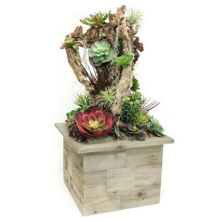 Dalmarko Designs Succulent Floor Plant In Planter Walmart Com