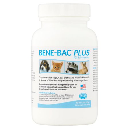 - PetAg Bene-Bac Plus FOS & Probiotics for Dogs & Cats, 4.5 oz.