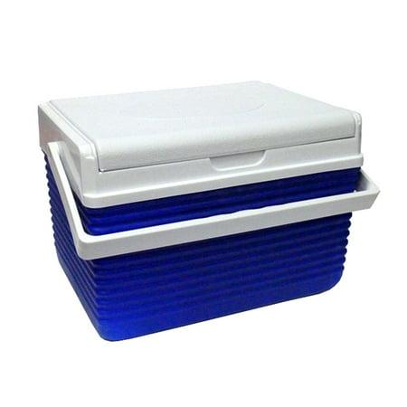 Cooler Mini Fridge