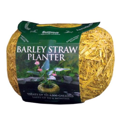 Summit Responsible Solution Barley Straw Planter by Summit Responsible Solutn