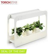 Best Indoor Grow Lights - TORCHSTAR LED Grow Light for Valentine, Indoor Plant Review