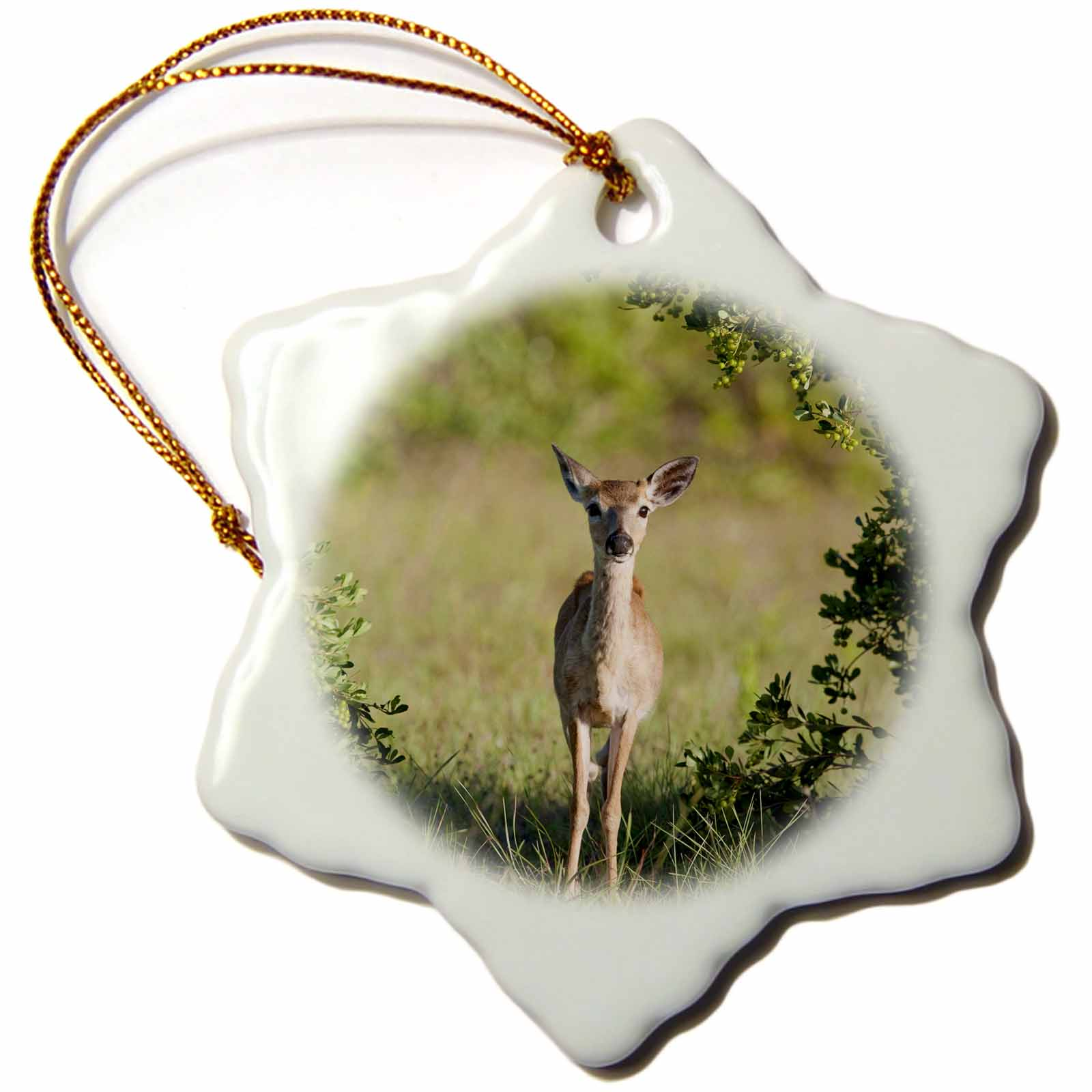 Image of 3dRose National Key Deer Refuge, Big Pine Island, Florida - US10 MPR0388 - Maresa Pryor, Snowflake Ornament, Porcelain, 3-inch
