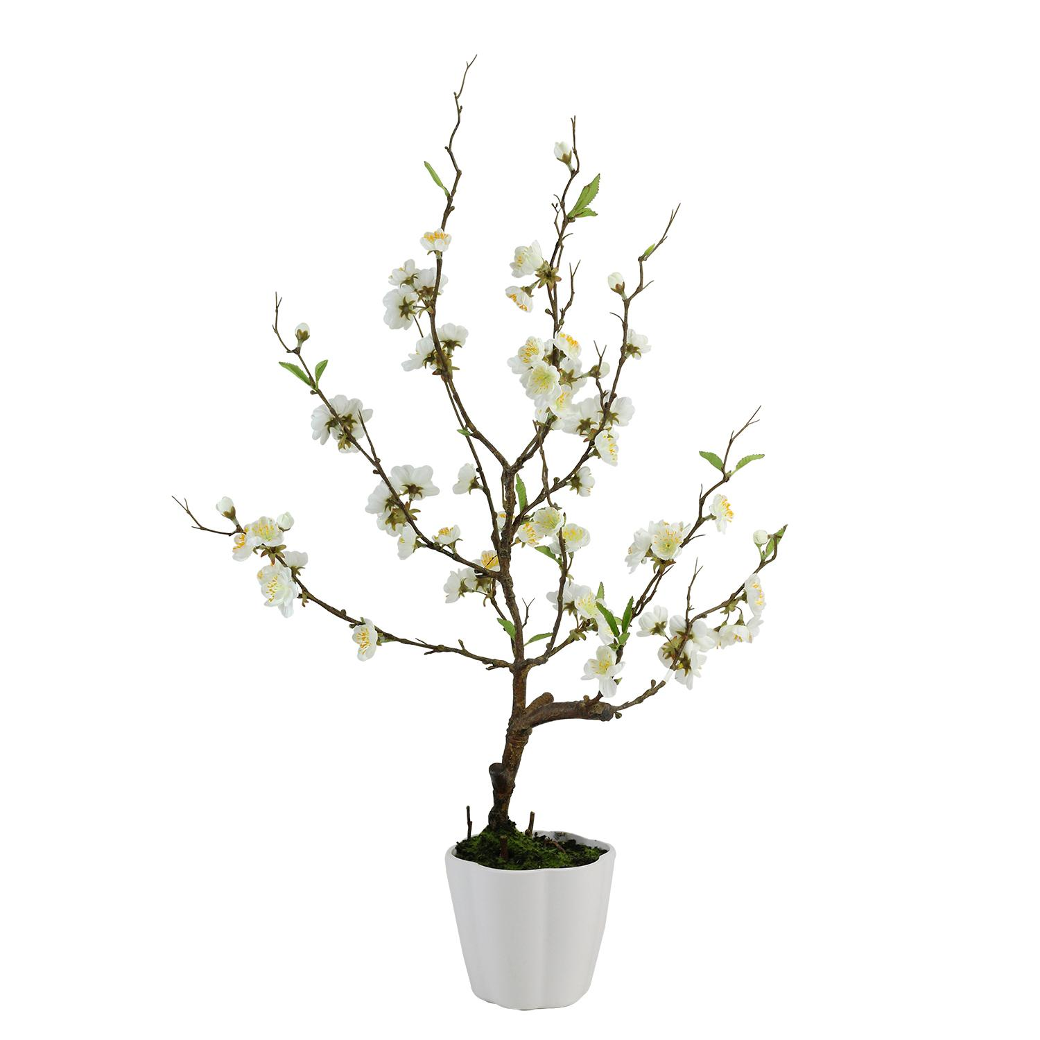 "28"" Cream White Artificial Ming Cherry Blossom Tree in a ..."
