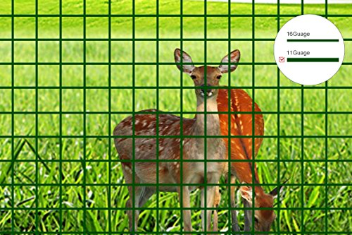 Mr.Garden 5ft-Hx25ft-L Mesh 2.4 inch Openings PVC Coated Fence Wire Poultry Netting Gutter Guards Chicken Run... by Wellco Industries Inc.