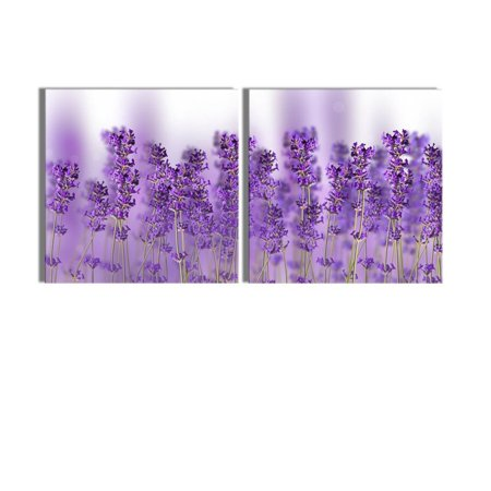 wall26 - Canvas Prints Wall Art - Close up Photo of Lavender | Modern Wall Decor/Home Decoration Stretched Gallery Canvas Wrap Giclee Print. Ready to Hang - 16