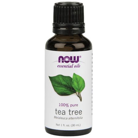 Original Australian Tea Tree - NOW Tea Tree Oil, 1 Oz