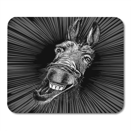 Donkey Head (LADDKE Head Vector Drawing of a Crazy Donkey Face Illustration Mousepad Mouse Pad Mouse Mat 9x10)