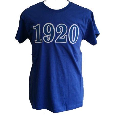 Buffalo Dallas Zeta Phi Beta 1920 Applique Ladies Tee [Short Sleeve - Blue - L]](1920 Clothes)