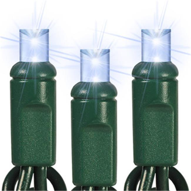 Queens of Christmas S-50MMPW-6G Pure White M5 LED Lights with 6 inch Spacing and Green Wire