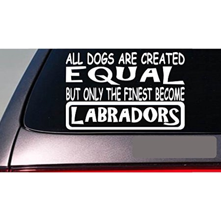 Labradors all dogs equal 6