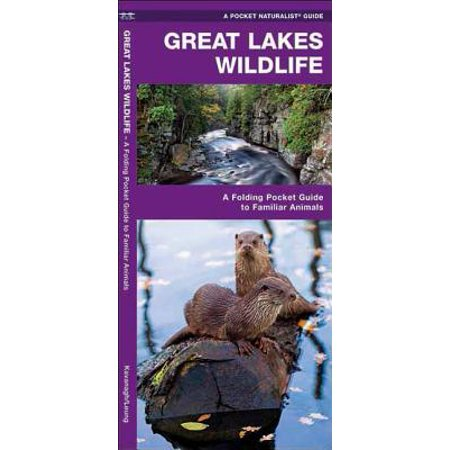 Regional Nature Guides: Great Lakes Wildlife: A Folding Pocket Guide to Familiar Species (Other) - Lakes Regional Park Halloween