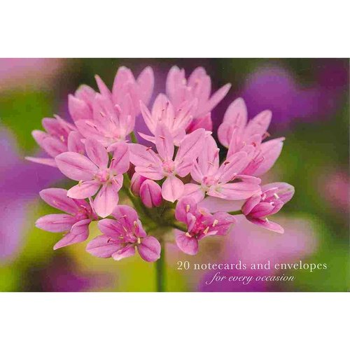 Card Box of 20 Notecards and Envelopes: Allium: A Delightful Pack of High-Quality Flower Gift Cards and Decorative Envelopes.