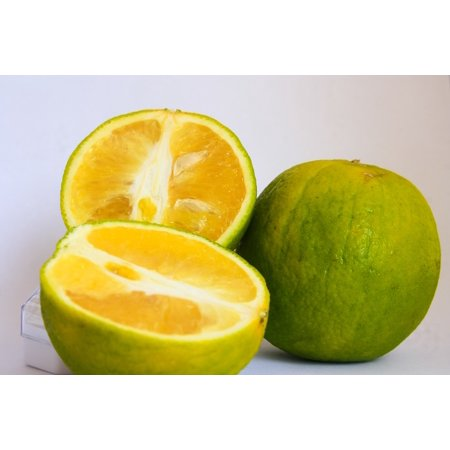 - LAMINATED POSTER Green Fruit Fresh Cut Healthy Food Lime Citrus Poster Print 24 x 36