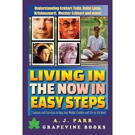 Living In  The Now  In Easy Steps  Understanding The Masters Of Enlightenment  Eckhart Tolle  Dalai Lama  Krishnamurti And More