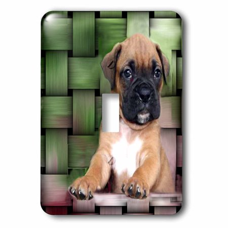 Brindle Boxer Puppy (3dRose Brindle Boxer Puppy - Single Toggle Switch (lsp_4142_1))