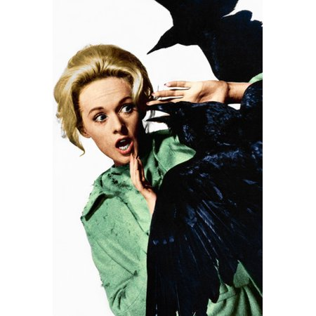 Tippi Hedren in The Birds being attacked by black crow Hitchcock classic 24x36 Poster - Black Crowes Halloween Poster